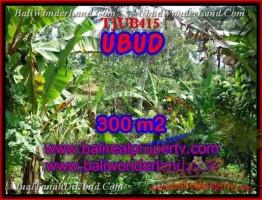 TANAH di UBUD BALI DIJUAL 300 m2  View kebun alami