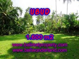 DIJUAL TANAH DI UBUD RP 3.850.000 / M2 - TJUB416 - INVESTASI PROPERTY DI BALI