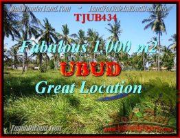 TANAH MURAH di UBUD DIJUAL 1,000 m2 di Sentral Ubud