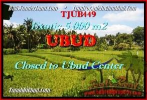 DIJUAL MURAH TANAH di UBUD Untuk INVESTASI TJUB449