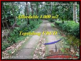 TANAH MURAH di UBUD 1,000 m2 di Ubud Tegalalang