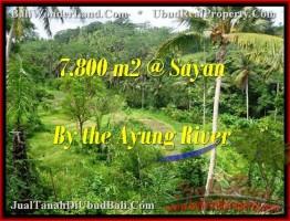 DIJUAL TANAH MURAH di UBUD BALI 78 Are di Dekat sentral Ubud