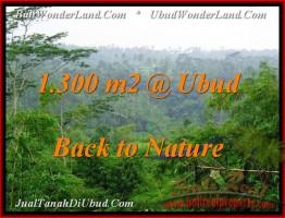 DIJUAL TANAH MURAH di UBUD BALI 1,300 m2 di Ubud Tegalalang