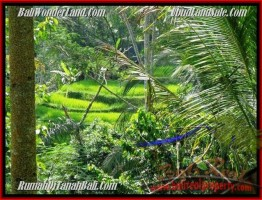 TANAH di UBUD JUAL 7.25 Are View Tebing,sawah dan sungai