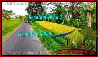 DIJUAL TANAH di UBUD BALI 700 m2 di Ubud Tegalalang