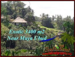 TANAH MURAH di UBUD BALI 3,400 m2  View Sawah ,Tebing link Villa