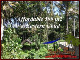 JUAL TANAH MURAH di UBUD 500 m2  View Kebun link Villa