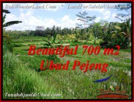 TANAH di UBUD BALI DIJUAL MURAH 700 m2 di Ubud Pejeng