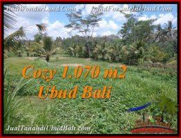 JUAL TANAH di UBUD BALI 10.7 Are View Sawah dan kebun
