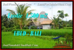 JUAL TANAH di UBUD Untuk INVESTASI TJUB541