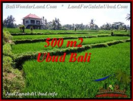 JUAL TANAH MURAH di UBUD 5 Are View Sawah, link. villa