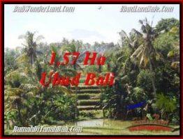 JUAL TANAH MURAH di UBUD 15,700 m2  View Sawah, gunung dan sungai
