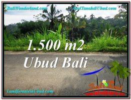 TANAH di UBUD BALI DIJUAL MURAH 1,500 m2  View Kebun dan Tebing