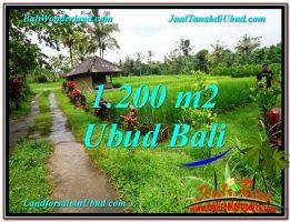 JUAL TANAH di UBUD BALI 1,200 m2  View sawah dan kebun