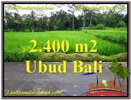 TANAH MURAH JUAL   UBUD 2,800 m2  View sawah