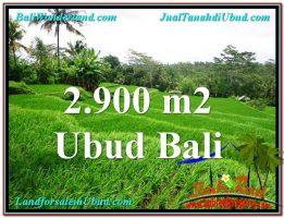 TANAH di UBUD JUAL 2,900 m2  View sawah