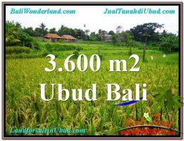 TANAH MURAH di UBUD BALI 36 Are di Sentral Ubud
