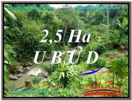 TANAH MURAH DIJUAL di UBUD BALI 26,000 m2 di Sentral Ubud