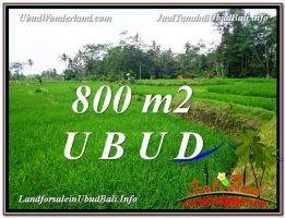 TANAH di UBUD DIJUAL MURAH Untuk INVESTASI TJUB581