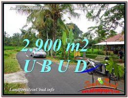 DIJUAL TANAH di UBUD BALI 2,900 m2 di Sentral Ubud