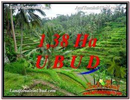 JUAL TANAH MURAH di UBUD BALI Untuk INVESTASI TJUB590