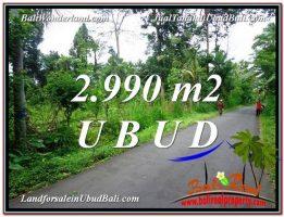 JUAL TANAH di UBUD BALI Untuk INVESTASI TJUB591