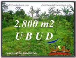 JUAL TANAH di UBUD BALI 2,800 m2  View kebun