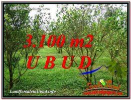 DIJUAL TANAH di UBUD 3,100 m2 di Ubud Tegalalang