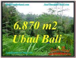 JUAL MURAH TANAH di UBUD 6,870 m2 di Ubud Tampak Siring