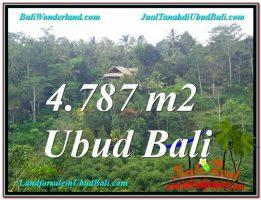 JUAL TANAH MURAH di UBUD Untuk INVESTASI TJUB603