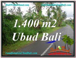 TANAH MURAH di UBUD BALI Untuk INVESTASI TJUB612