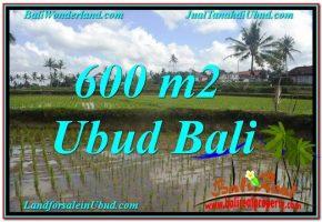 JUAL TANAH MURAH di UBUD 600 m2  View sawah