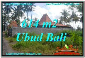 TANAH MURAH  di UBUD BALI DIJUAL 614 m2  View kebun lingkungan Villa