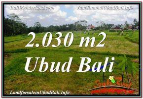 TANAH MURAH DIJUAL di UBUD BALI 20 Are di Ubud Tegalalang