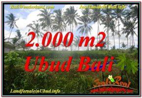 TANAH MURAH JUAL   UBUD 20 Are View Sungai  Kecil lingkungan Villa