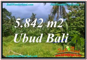 JUAL TANAH MURAH di UBUD 58 Are View Tebing dan Sungai, Link. Villa