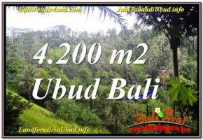 JUAL MURAH TANAH di UBUD BALI 42 Are View Tebing dan Sungai, Link. Villa