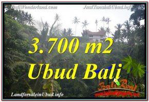 TANAH MURAH di UBUD BALI 3,700 m2 View Tebing dan Sungai, Link. Villa
