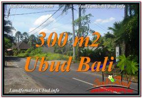 TANAH MURAH DIJUAL di UBUD BALI 300 m2 View Link. Villa dan Restoran