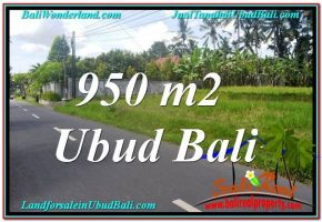 JUAL TANAH MURAH di UBUD BALI 10 Are View Sawah dan Sungai Kecil, Link. Villa