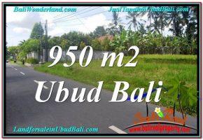 TANAH MURAH di UBUD BALI 950 m2  View Sawah dan Sungai Kecil, Link. Villa