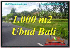 TANAH DIJUAL di UBUD BALI 10 Are di Sentral / Ubud Center