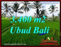TANAH DIJUAL MURAH DI UBUD BALI 34 Are View Sawah link Villa
