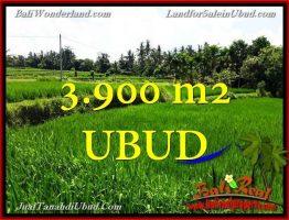 JUAL TANAH MURAH di UBUD 3,900 m2  View Sawah link Villa