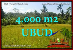 JUAL TANAH di UBUD BALI 4,000 m2 di Ubud Gianyar