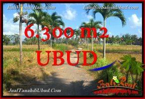 TANAH DIJUAL MURAH DI UBUD BALI 6,300 m2 View Tebing link Villa