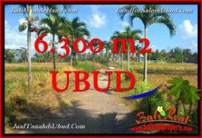 JUAL TANAH MURAH di UBUD BALI Untuk INVESTASI TJUB662