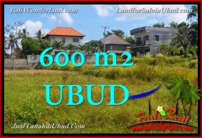 JUAL TANAH MURAH di UBUD BALI 600 m2 View Sawah link Villa