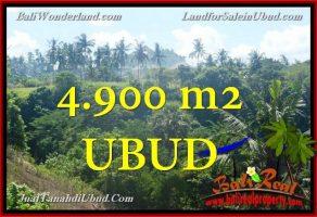 TANAH DIJUAL MURAH di UBUD 4,900 m2 di Ubud Gianyar