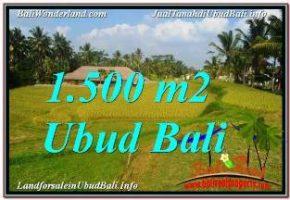 TANAH DIJUAL MURAH di UBUD Untuk INVESTASI TJUB668